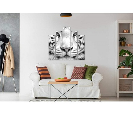 Морда белого тигра крупным планом,  черно-белое фото