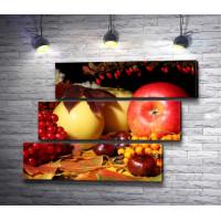Осенний натюрморт: яблоки,  каштаны,  гроздья рябины и калины