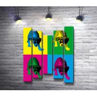 Английский бульдог в четырех цветах