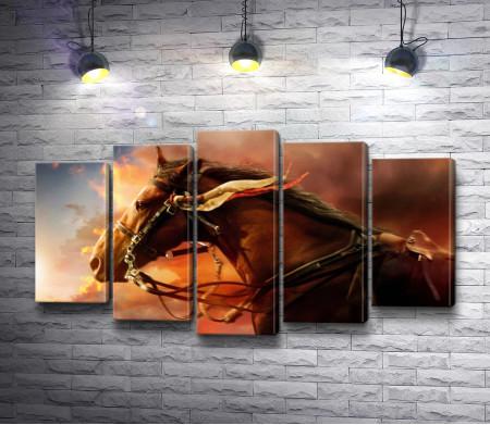 Лошадь во время заката