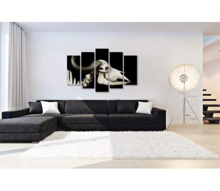 Череп быка, черно-белое фото