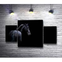Лошадь на черном фоне