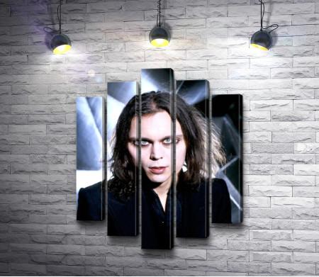 Финский музыкант Вилле Вало