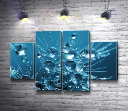 Капли воды в макросъемке