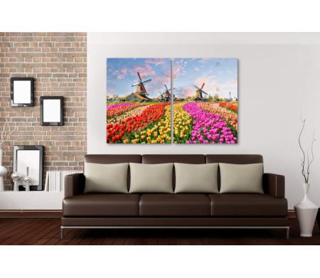 Ландшафт с тюльпанами и мельницами