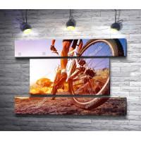 Велосипедист в лучах рассвета