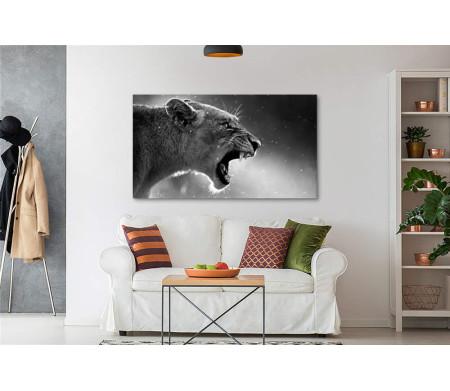 Рычащая львица, черно-белое фото