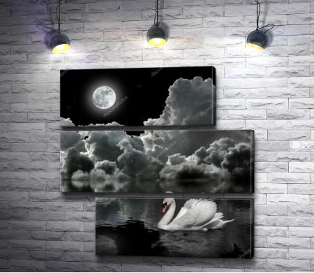 Лебедь на зеркальном озере  под ночной луной, черно-белое фото