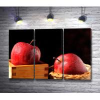 Яблоки в росе на черном фоне