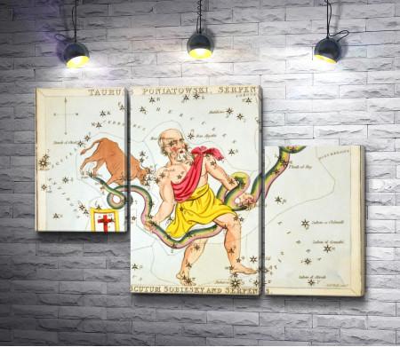 """Сидни Холл """"Зеркало Урании - Телец Понятовского, Змееносец, Щит Собеского, и Змея"""""""