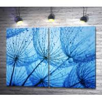 Одуванчики в каплях росы на голубом фоне