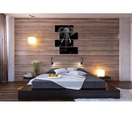 Слон с большими бивнями, черно-белое фото