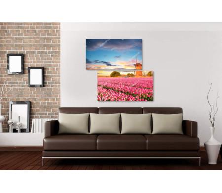 Поле тюльпанов на фоне мельницы и неба в закате