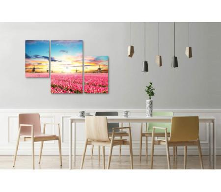 Солнечный закат над полем тюльпанов
