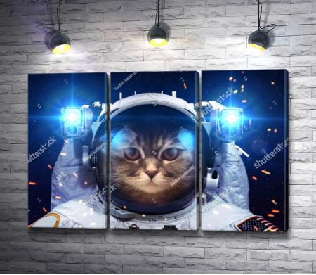 Кот в скафандре
