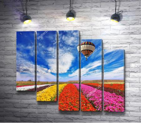 Воздушный шар над цветочными полями