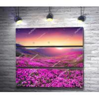 Магический закат в горах с розовыми цветами