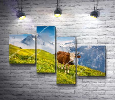 Корова на пастбище на Альпийском лугу