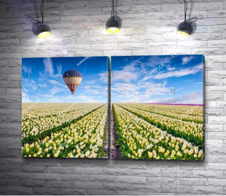 Воздушный шар над полем желтых тюльпанов