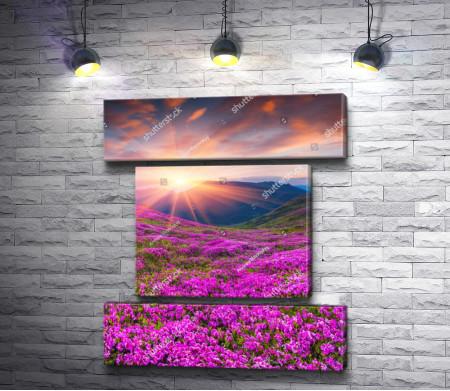 Закат в горах с розовыми цветами