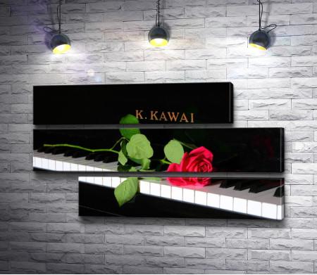 Роза на клавишах пианино