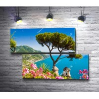 Дерево на фоне моря в городе Амальфи, Италия