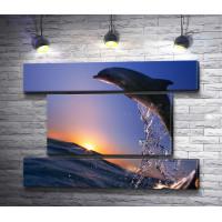 Прыжок дельфина на закате солнца