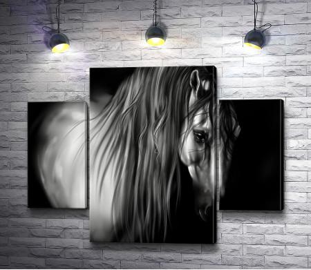 Черно-белый снимок лошади
