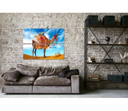 Верблюд в пустыне