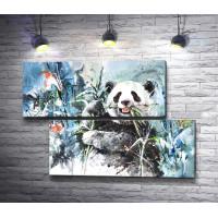 Панда ест траву