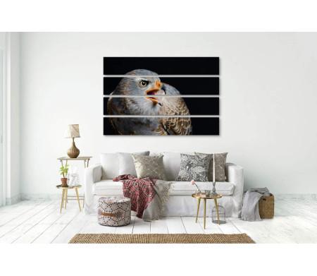 Птица на черном фоне