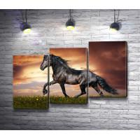 Грациозная лошадь на фоне заката