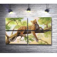 Грациозный леопард на дереве