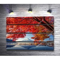 Осеннее дерево над озером с видом на гору Фучжу