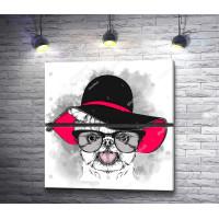 Щенок в очках и шляпе