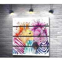 Разноцветные зебры