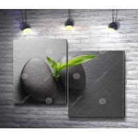 Спа-камни и росток бамбука