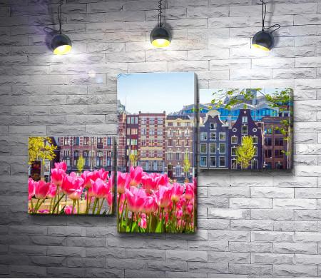 Старые дома на фоне тюльпанов, Амстердам