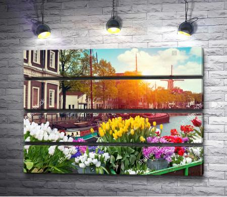 Водные каналы Амстердама