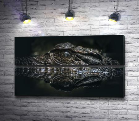 Крокодил над гладью озера