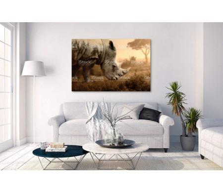 Носорог в Сафари