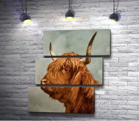 Горный буйвол