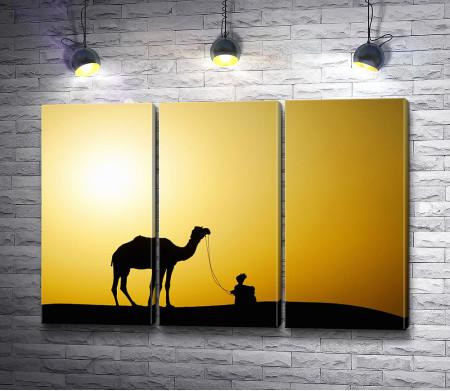 Верблюд во время рассвета