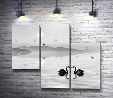 Лебеди на озере, черно-белое фото