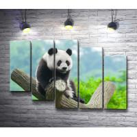 Удивленная панда