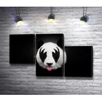 Панда с интересным окрасом