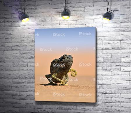 Хамелеон в пустыне