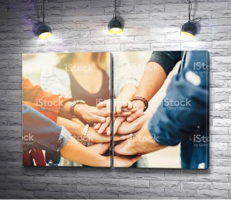 Дружеское единство