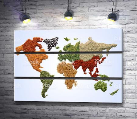 Карта мира из специй