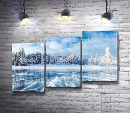 Лес у замерзшего озера